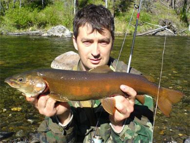 Рыбалка на Сарме. Сарминский ленок